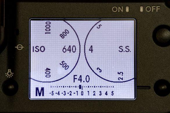 Fujifilm GFX100 test: a megapixel monster